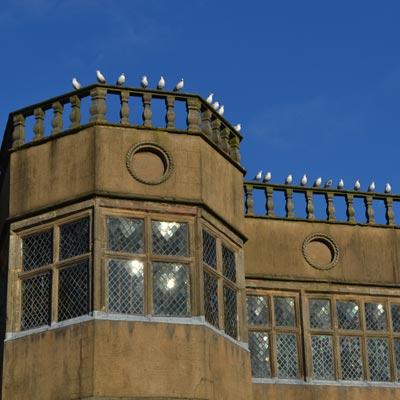 Astley Hall and seagulls