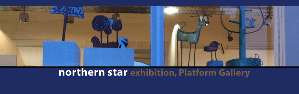 northern star exhibition 2015