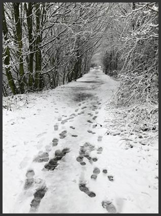 Lancashire snowscene